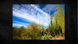 Phoenix, AZ Housing for Sale at Pointe Tapatio