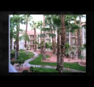 Homes at Pecos Ranch for Sale in Chandler